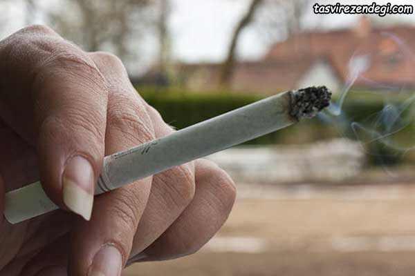از بین بردن بوی سیگار در خانه
