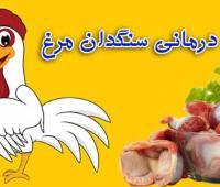 خواص درمانی سنگدان مرغ , فواید مصرف سنگدان مرغ