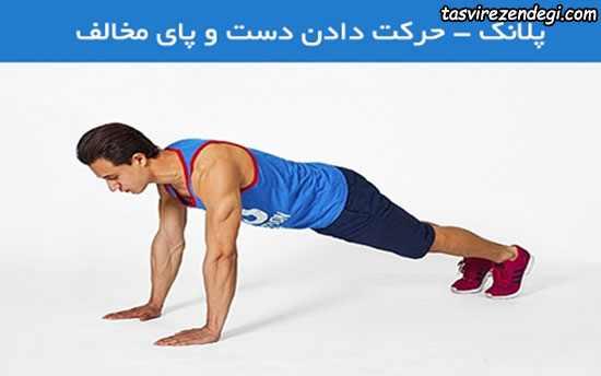 تمرین ورزشی,تناسب اندام