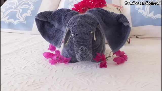 تزیین حوله عروس به شکل فیل