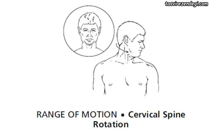 ورزش گردن درد