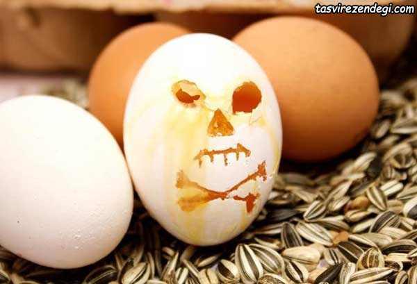 تشخیص تخم مرغ فاسد