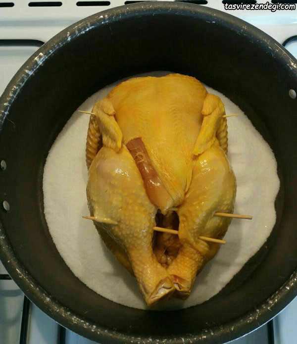 مرغ نمکی شکم پر