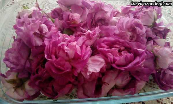 طرز تهیه مربای گل محمدی تازه