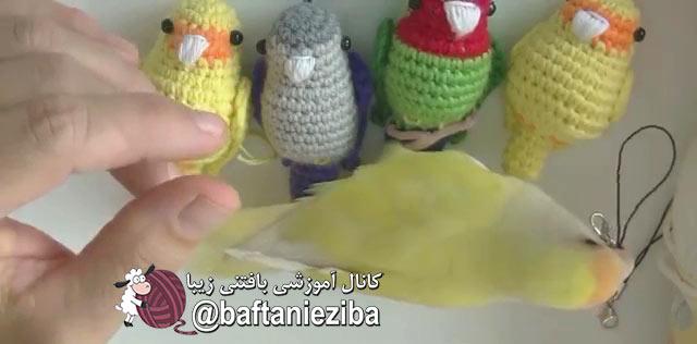 آموزش بافت جاکلیدی پرنده