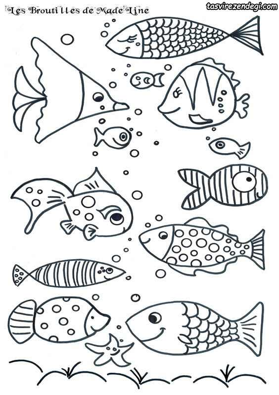طرح خام ماهی , نقاشی ماهی