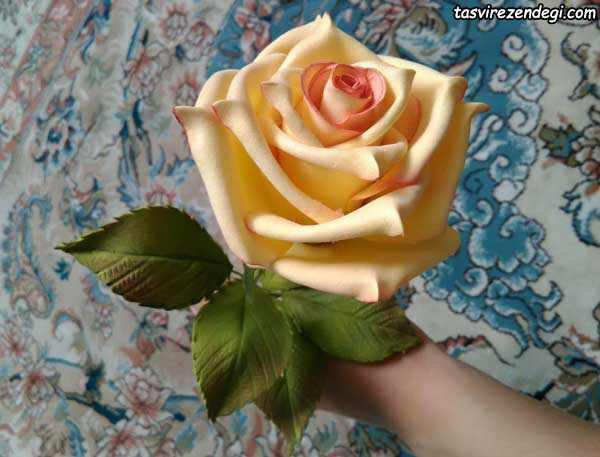 درست کردن گل رز فومی