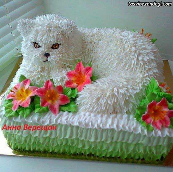 تزیین کیک تولد به شکل گربه
