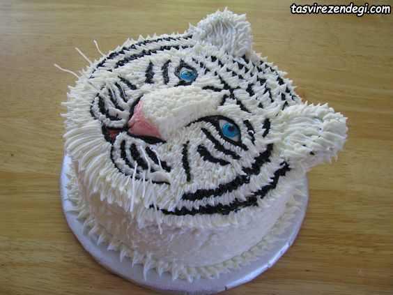 تزیین کیک تولد به شکل ببر
