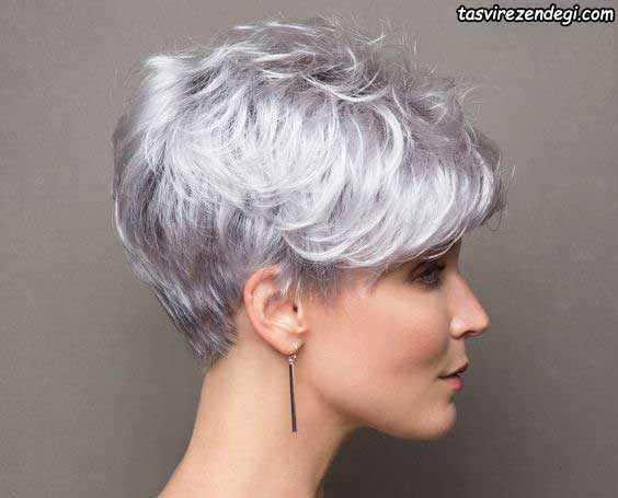 مدل موی کوتاه نقره ای