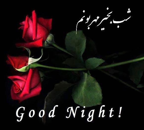 شب بخیر عاشقانه دوستانه