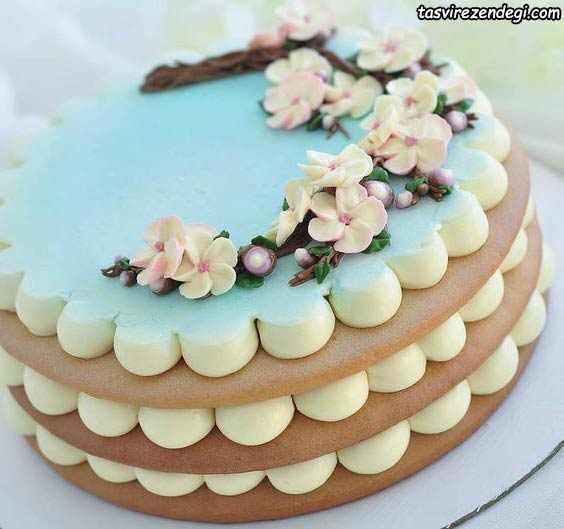 تزیین کیک بیسکویت گرد