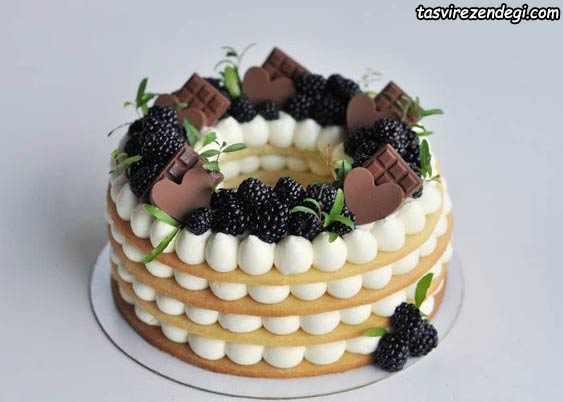تزیین بیسکو کیک گرد