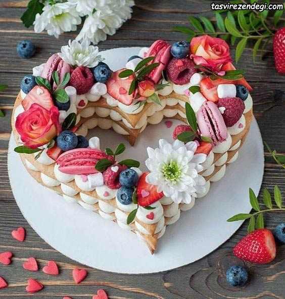 مدل تزیین کیک بیسکویت قلبی