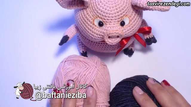 کاموا برای بافت خوک