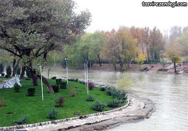 پارک جنگلی ناژوان