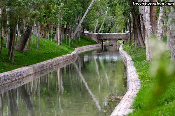 مادی اصفهان