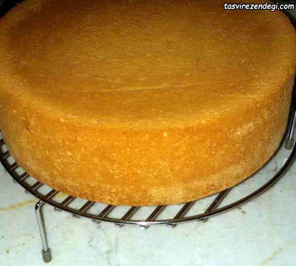 کیک اسفنجی امریکایی