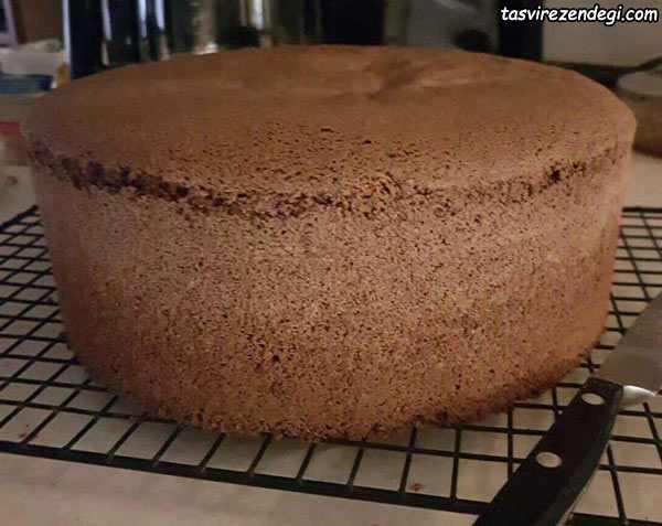 کیک اسفنجی امریکایی شکلاتی