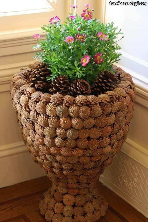 تزیین گلدان با میوه کاج