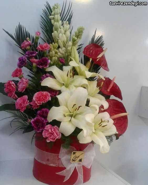 عکس مدل گل خواستگاری
