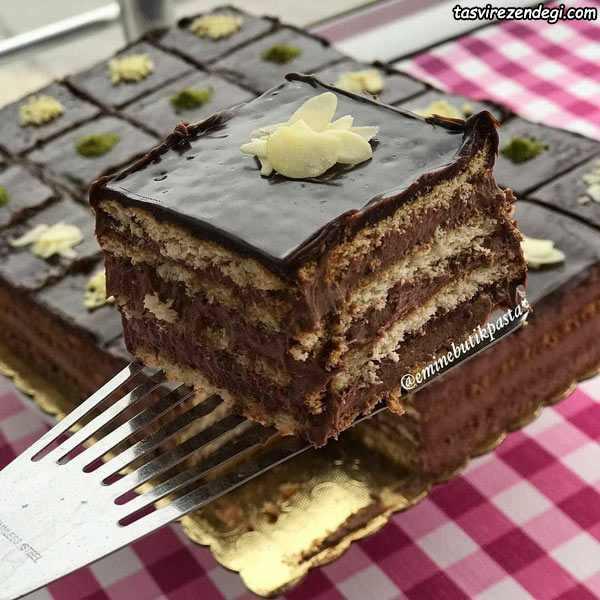 کیک بیسکویت شکلاتی