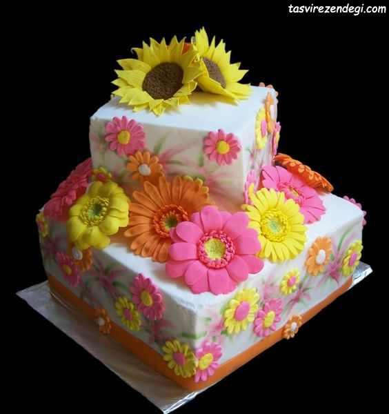 کیک روز دختر گل رنگی