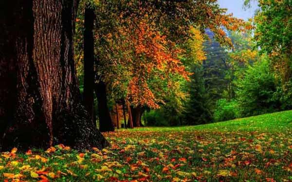 سفر به آنتالیا در پاییز