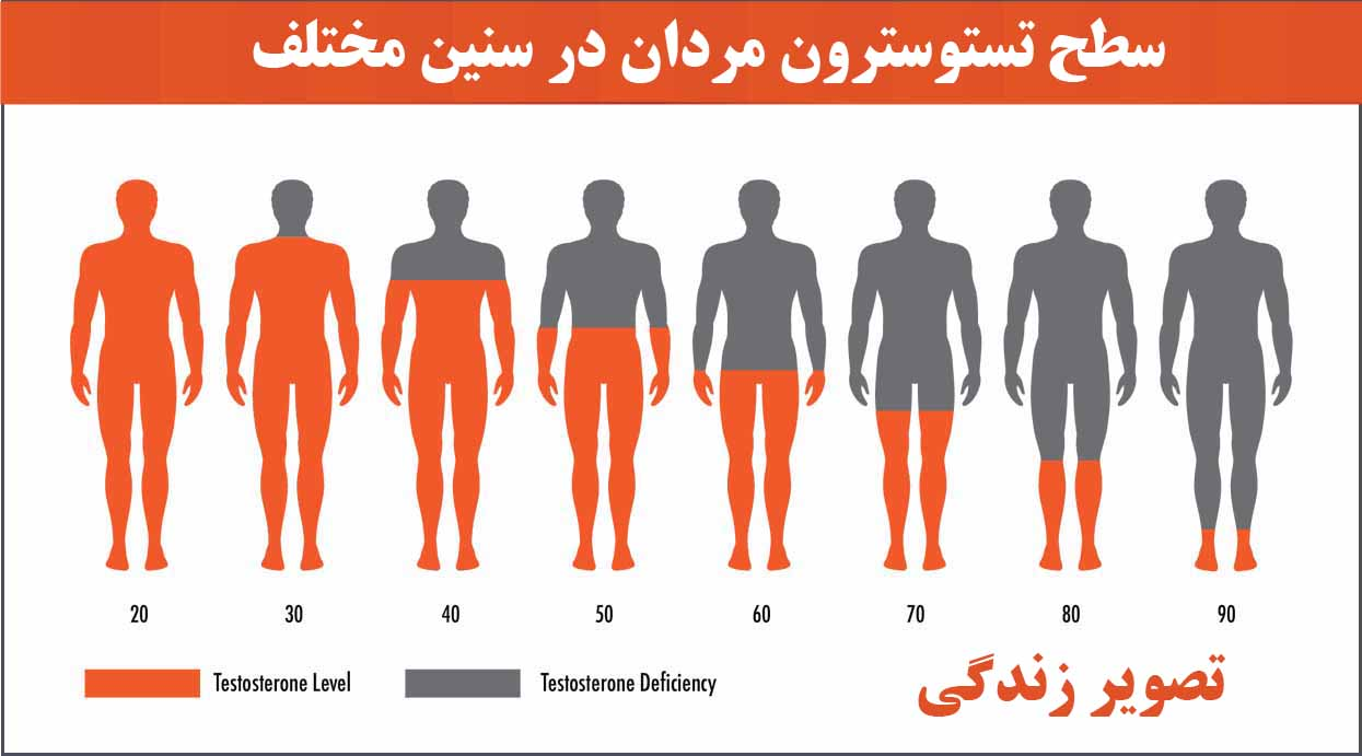 سطح تستوتسرون مردان در سنین مختلف