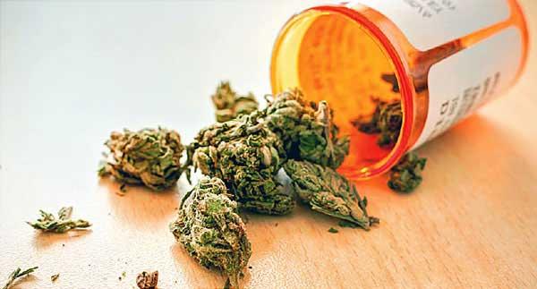 ماده مخدر ماریجوآنا
