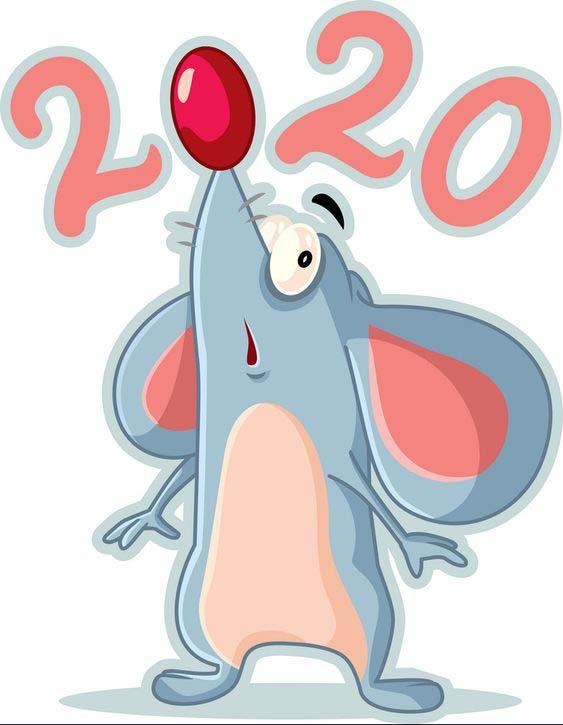 موش نماد سال 2020