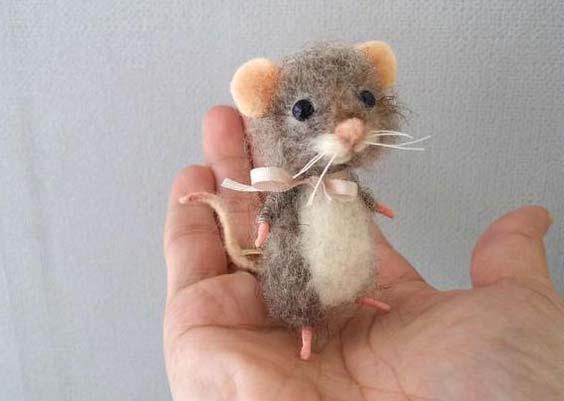 موش کوچولوی کچه