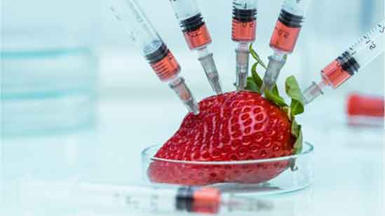 میوه های هورمونی و تراریخته