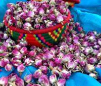 خشک کردن غنچه گل محمدی