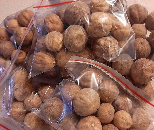 لیمو عمانی بسته بندی شده