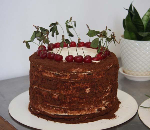 مدوویک کیک روسی عسلی شکلاتی