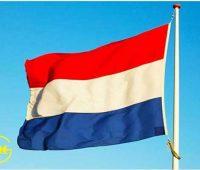 زبان هلندی