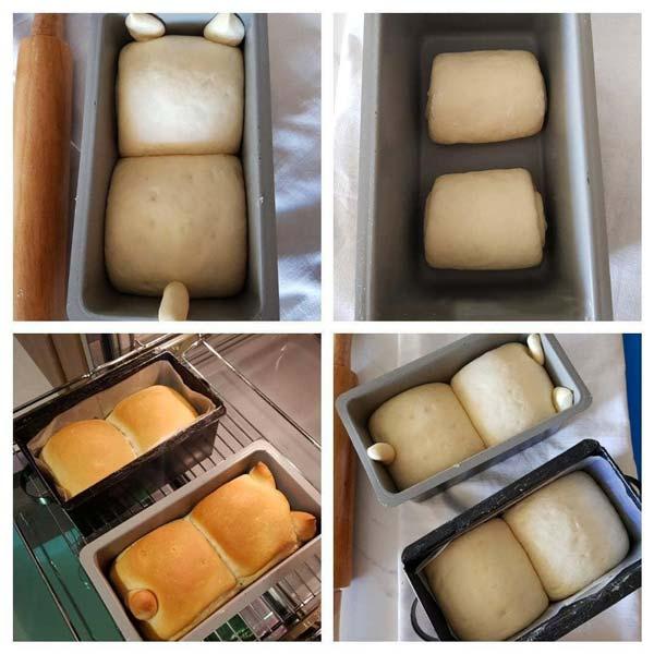 در قالب گذاشتن خمیر نان تست