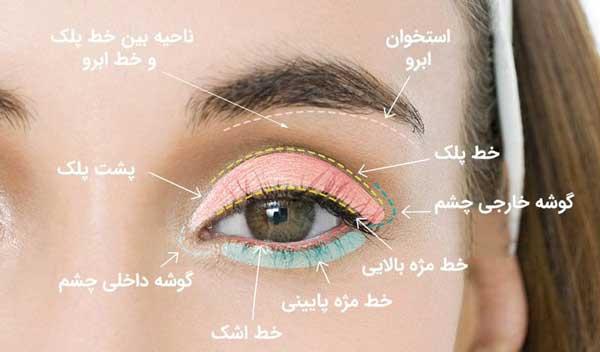 ناحیه های مهم چشم برای آرایش