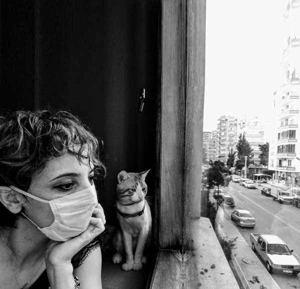 عکس پروفایل دختر به همراه گربه کنار پنجره