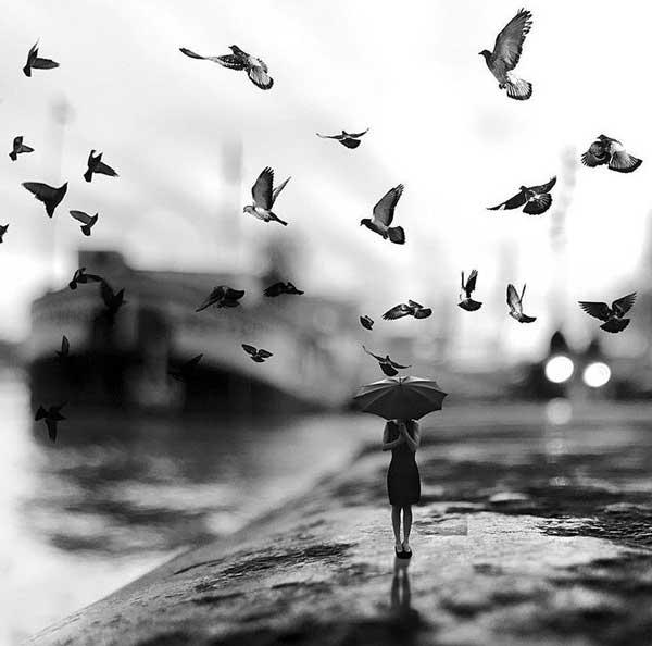 عکس سیاه سفید تنهایی