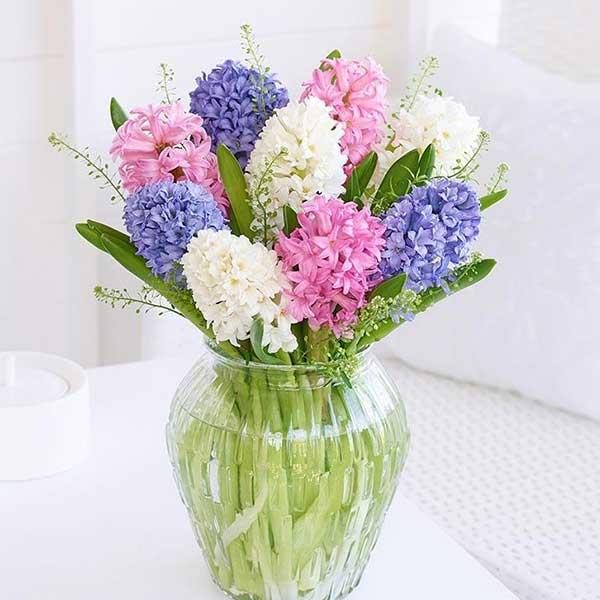 گلدان گل سنبل